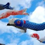 ベランダ用の鯉のぼりが人気急上昇!サイズや料金相場を探る