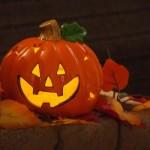 ハロウィンかぼちゃを育ててランタンと美味しいレシピを作ろう!