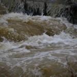 川の防災情報を台風情報と一緒にチェックすれば早期対策が可能!
