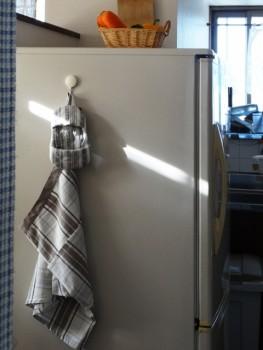 refrigerator-vegetable