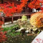 京都で紅葉の名所巡りをするなら抑えておきたいベストスポット!