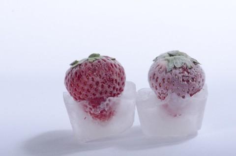肉や魚は再冷凍できる?一度解凍した食品をまた冷凍するのは危険なのか